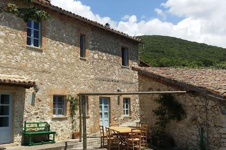 Tipico casale in pietra con uliveto - Guardea - Villa