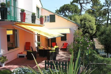 Bed and Breakfast La Baule les Pins - La Baule-Escoublac