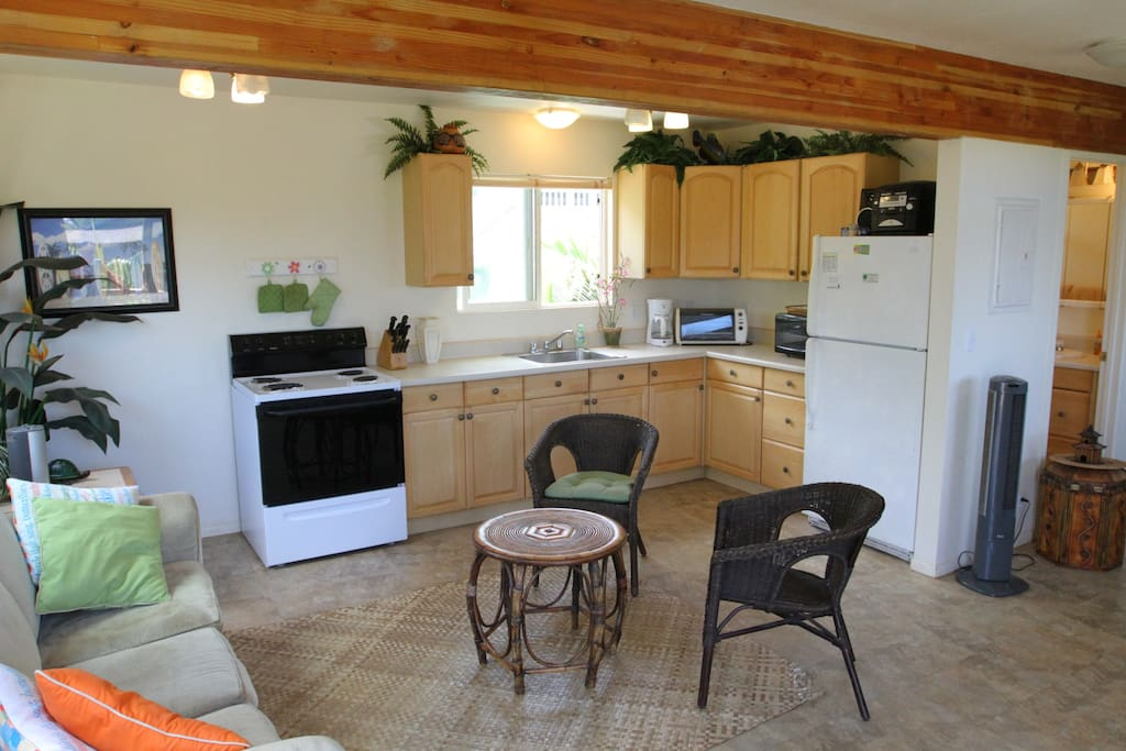 Large kitchen and dining area plus pull-out futon.