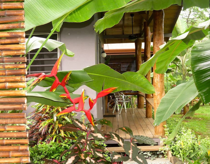 Porches and heliconias everywhere!