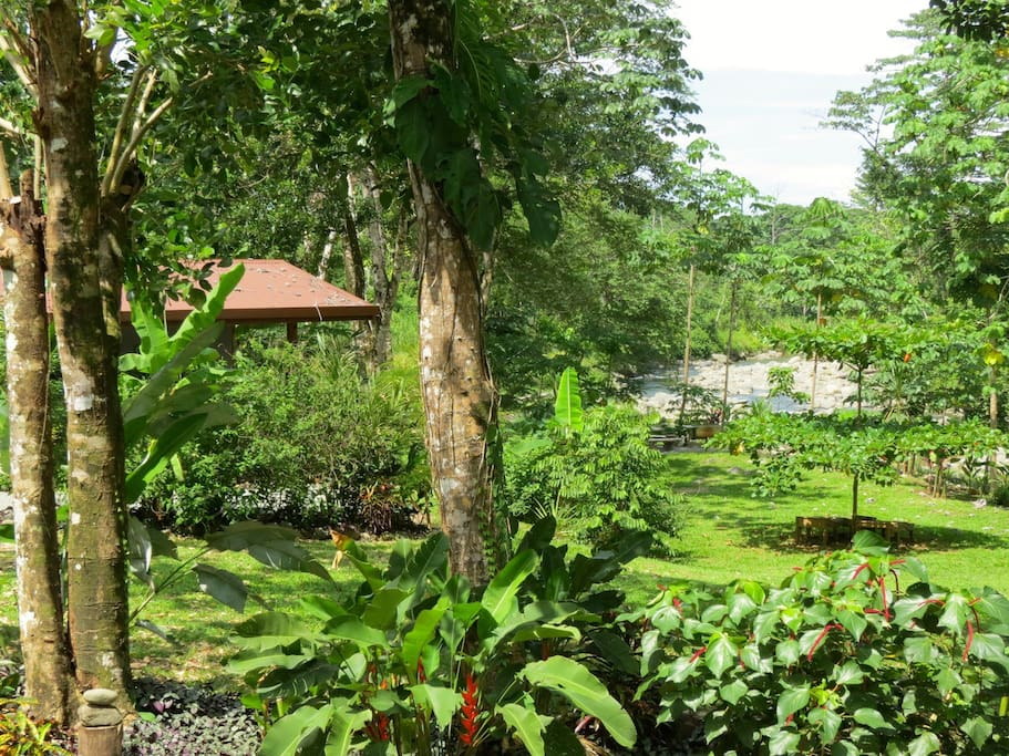 2 acres of lush landscaping by mother nature