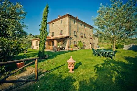 Wine, oil and relax: Tuscany!  - Lamporecchio