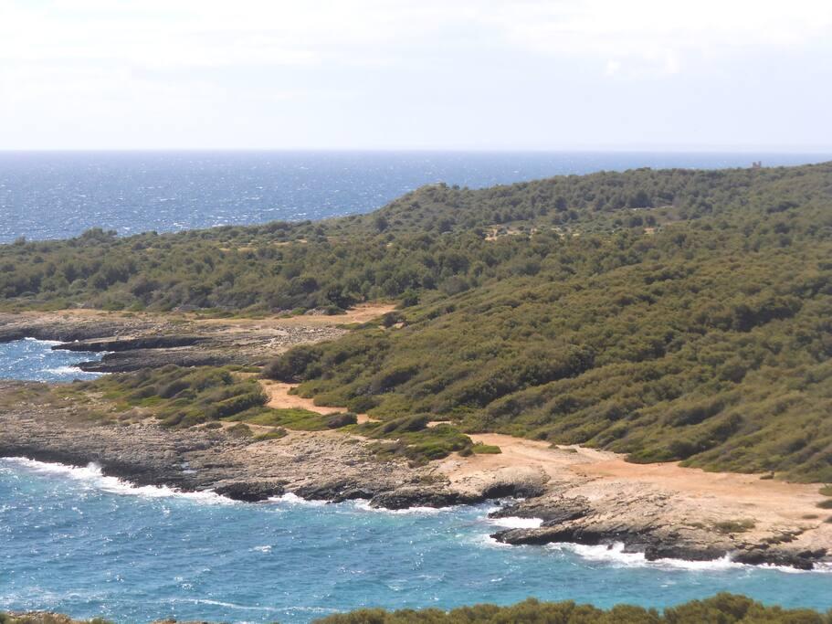 la scogliera del parco di porto selvaggio