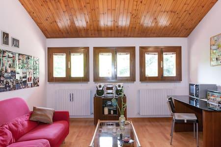 Modena/Carpi countryside - Attic - House