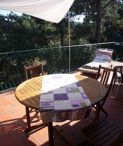 Maison ensoleillée et petite piscin - House