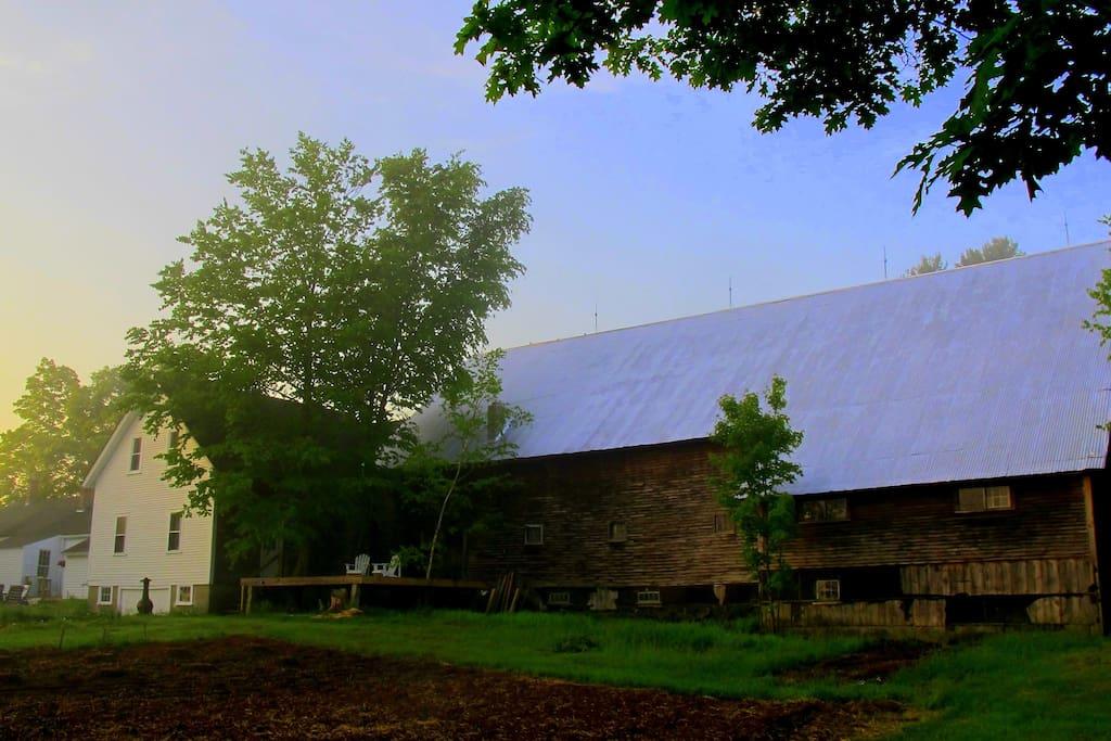 The Barn at dawn (back)