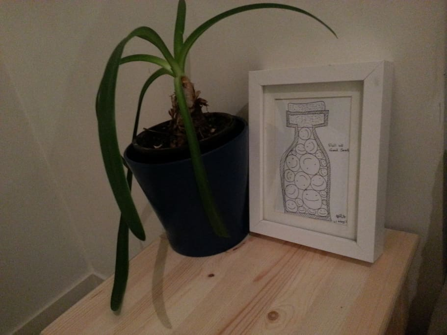 Artwork and plants by your bed.