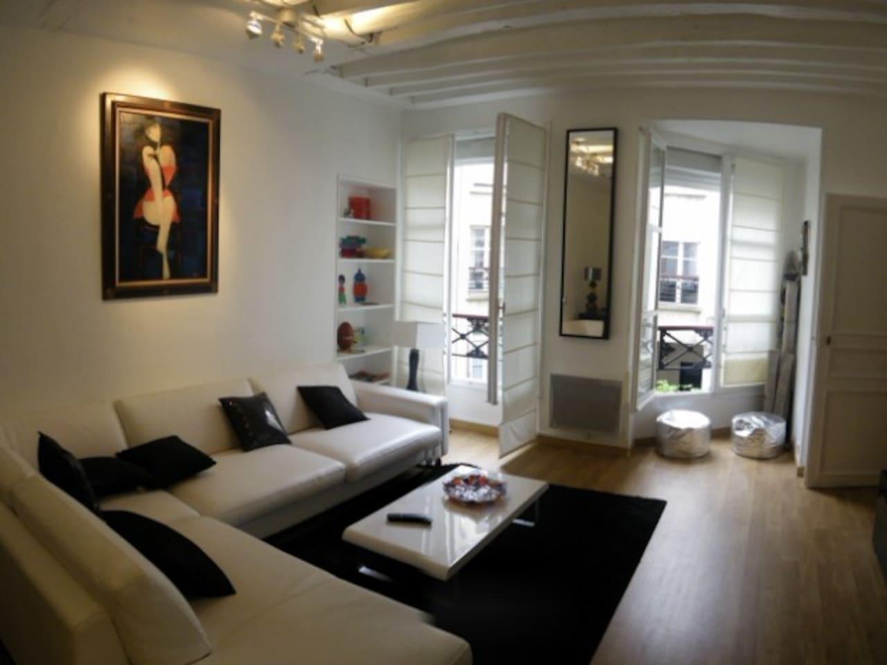 Charming apartment center of Paris