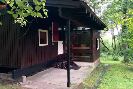 Caban Draenog: cosy woodland cabin - Cenarth - Casa de campo