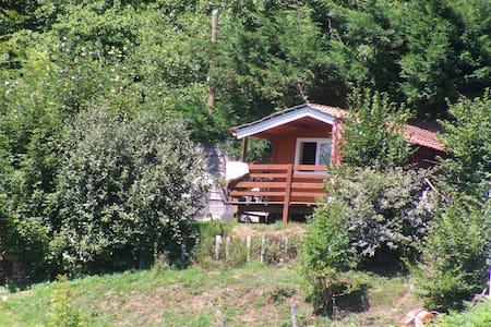 CHALET - La Salvetat-sur-Agout - Dům