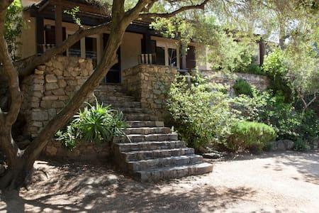 Villa Lauriers -8 personnes- - Lumio - Villa
