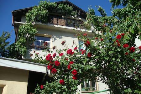 House with garden in Sofia's center - Sofia - Apartment