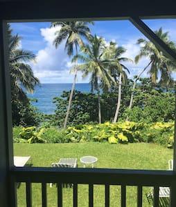 Relaxing Oceanfront getaway in Hana - Hana - House