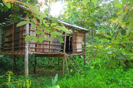 a house near jungle - Jambi - Bed & Breakfast