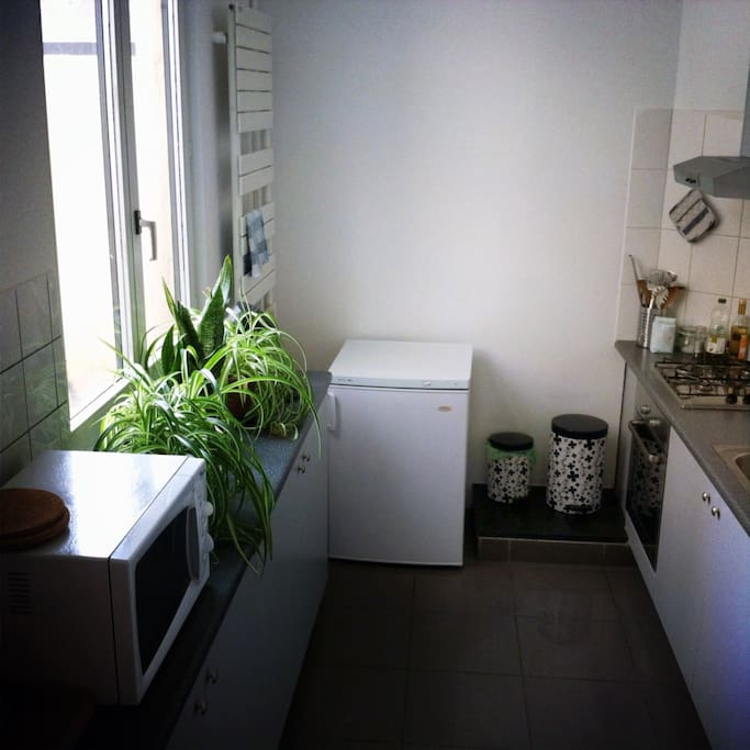 Kitchen with microwave, oven, fridge and freezer