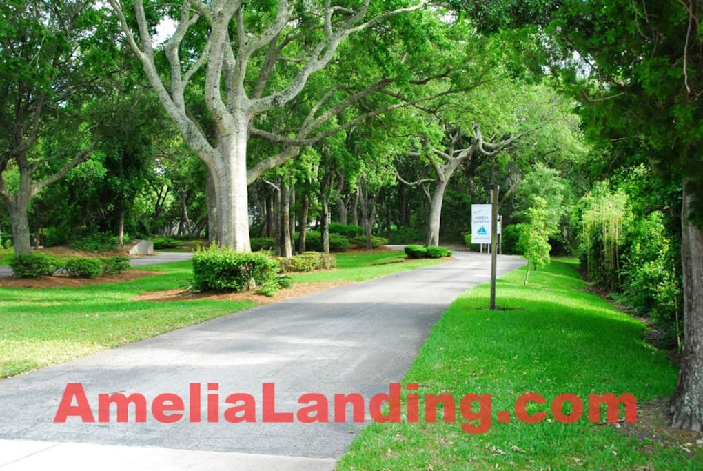 Amelia Landing is secluded in a stand of old southern live-oaks.