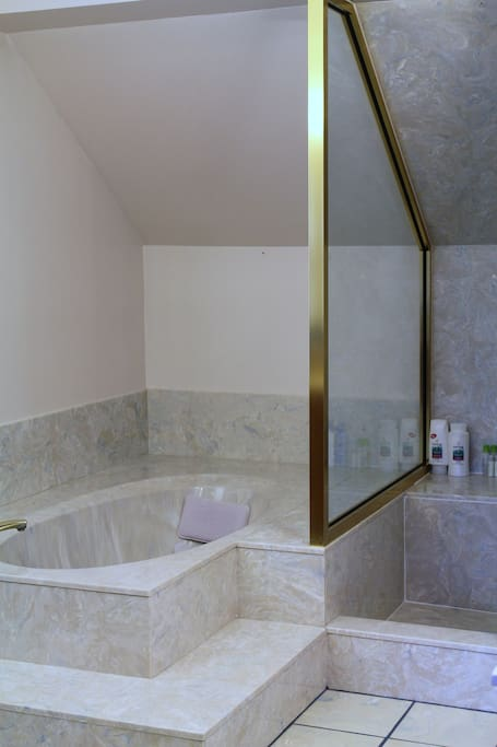 Master bath - separate tub and shower.