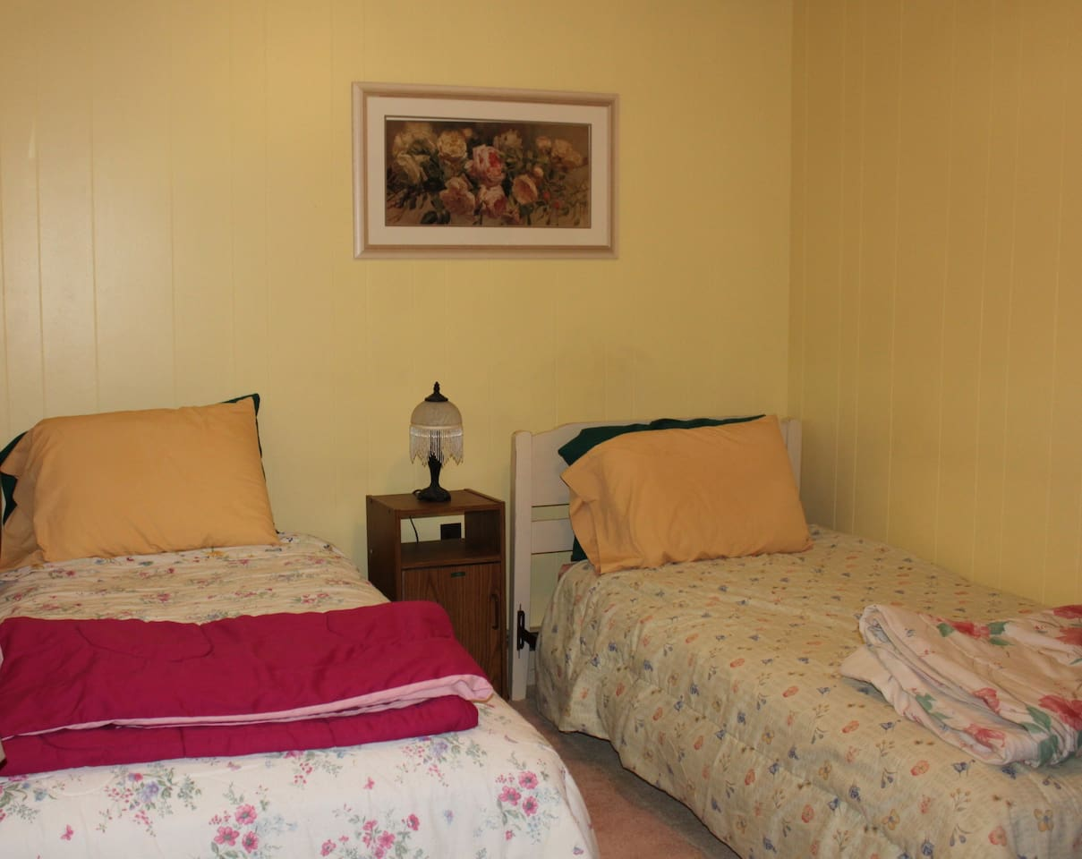 Bedroom has two twin beds
