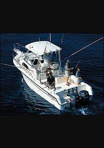 Dani 1 - Agia Marina - Bot