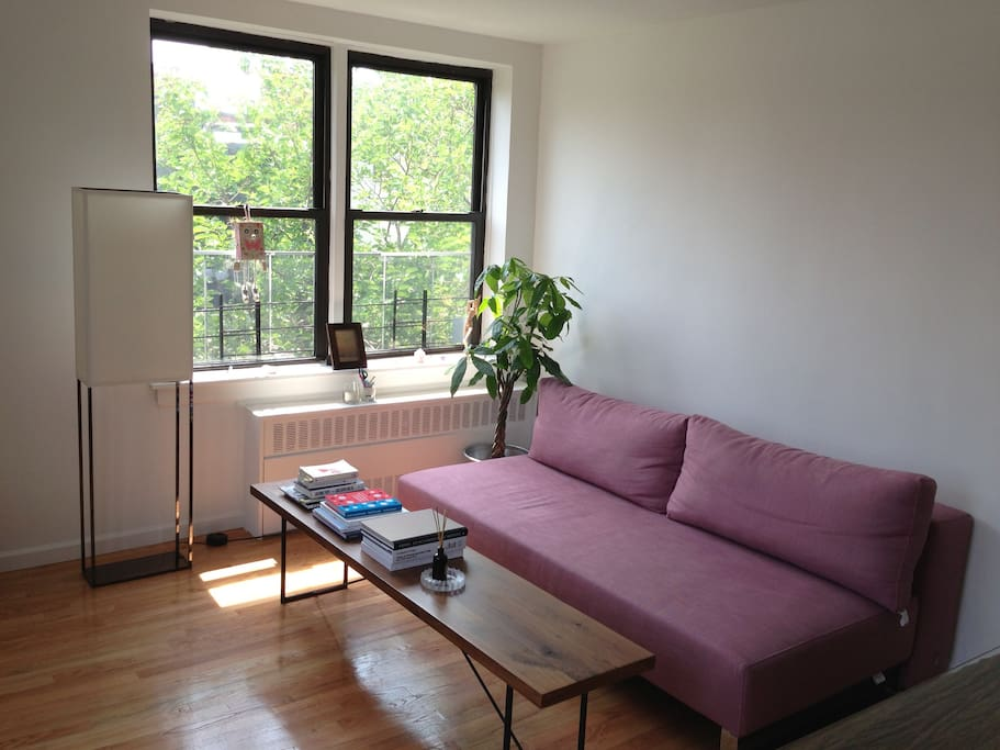 Living area with crash pad sofa (converts to queen size bed)