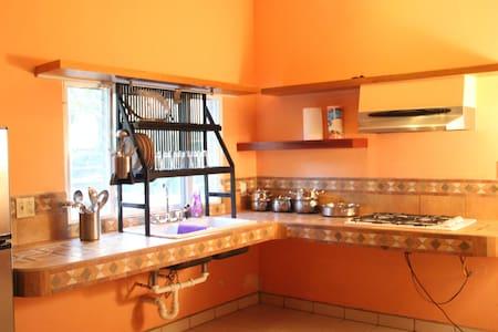 Pod 5: A Piece of Ground Hostel, Eatery, & Bar - Punta Gorda - Autre