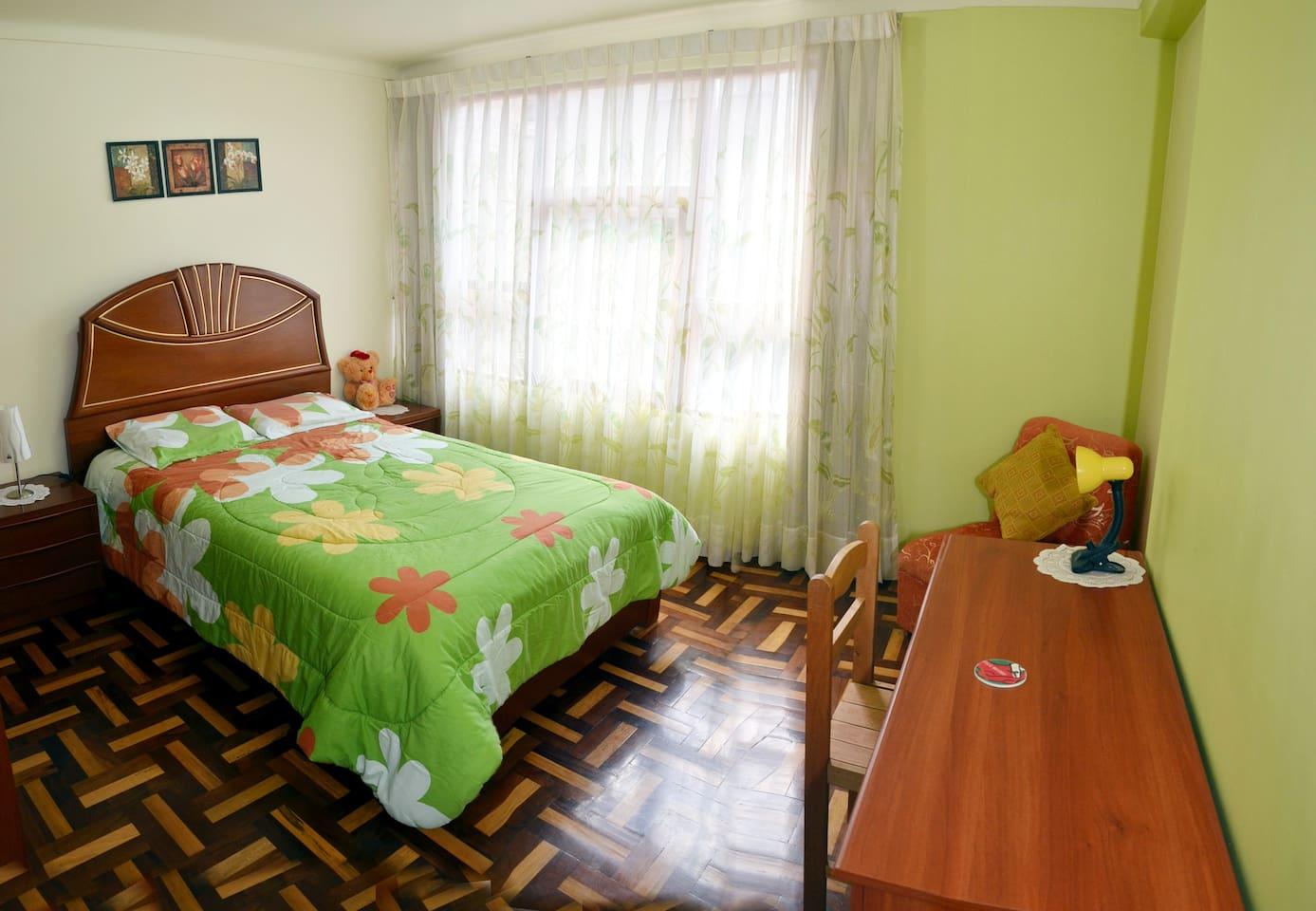Es una habitación confortable, espaciosa y con bastante iluminación, con vista al parque; baño privado, closet, lámparas y TV