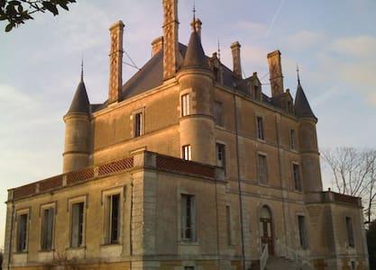 Chateau De Puybelliard - Castle