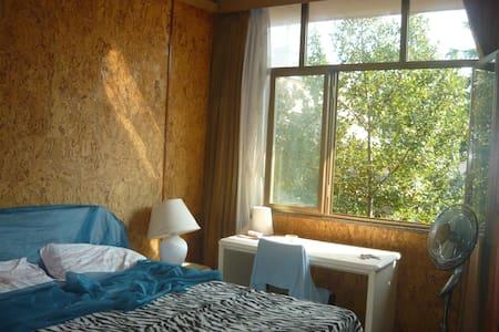 Centro Roma stanza con bagno privat - Rome - Apartment