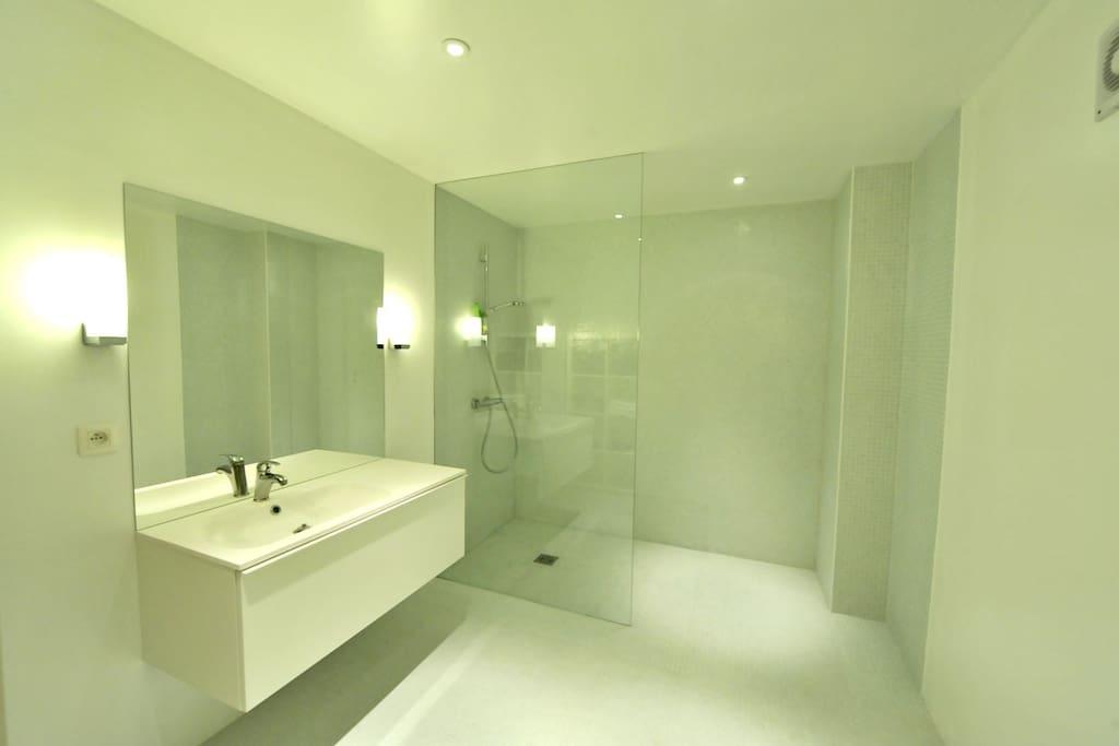 Striking modern bathroom with walk-in shower. Brand new !