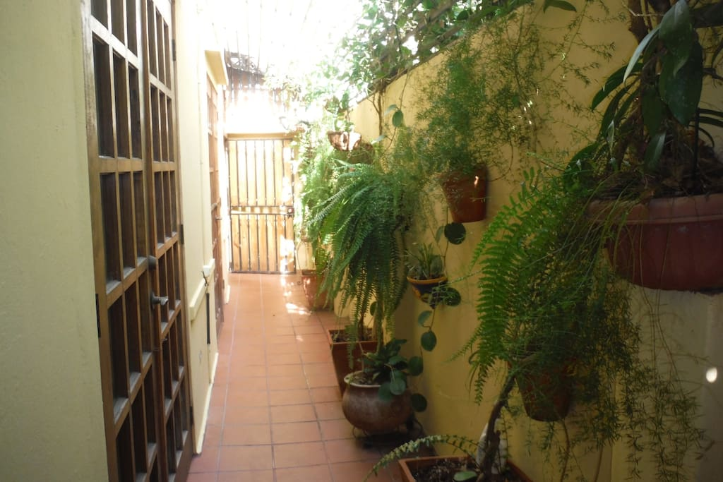 The casita is at the back of the house, so you enter through the garden passage.