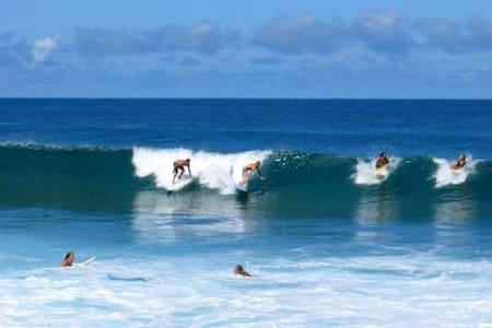 Surfers Paradise #3C - Haleiwa - House