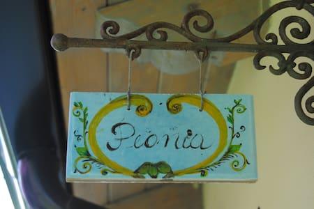 n.2 -Peonia - Camera Matrimoniale  - San Ferdinando