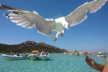 Trilocale a 300 metri dal mare - La Maddalena