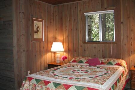 Meadow View Cabin - Trinity Center - Cabin