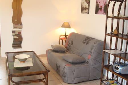 logement pour vacances ou cure thermale à Cambo - Hasparren - Apartment