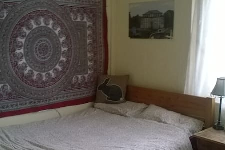 Bedroom & living room in cosy house - Brynmill