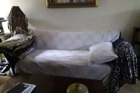 Comfy Couch/Airbed Near Downtown