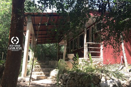Eco-Lodge Luum Ayni, Beautiful stay in Nature - Chichimilá - Bed & Breakfast
