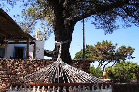"""Casa Payesa  """"Al Vent"""" - Cap de Barbaria - Casa"""