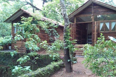 Firefly Cabin in the Woods for 2 with Natural pool - Assagao - Cabin