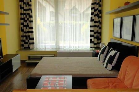 Apartmán/studio Čertovka, Harrachov - Harrachov