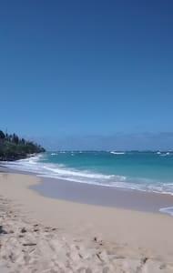 Wonderful Island Hideaway! - Kaaawa - House