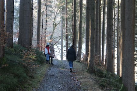 Mitten im Grünen mit Blick auf See und Berge - Immenstadt im Allgäu