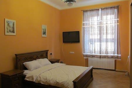 Класичні апартаменти в центрі - L'viv - Apartment