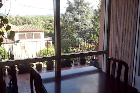 Piso en el centro de Olot con vistas - Olot - Apartamento