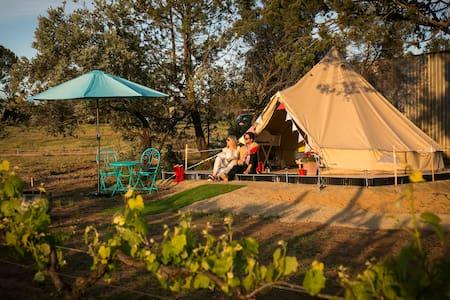 Grapevine Glamping B&B Quartz Vein Tent - Wahgunyah - Teltta