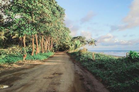 Ocean Rainforest Cabin & Kitchen - Pavones - Cabanya