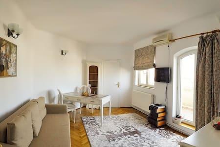 Center City Studio - București - Apartment