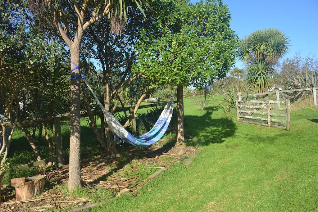 Hammock to Relax Upon.