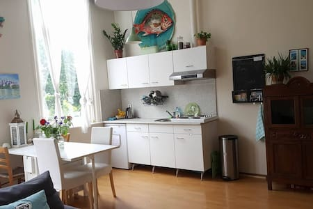 Nice room / shared living room in city center - Appartement